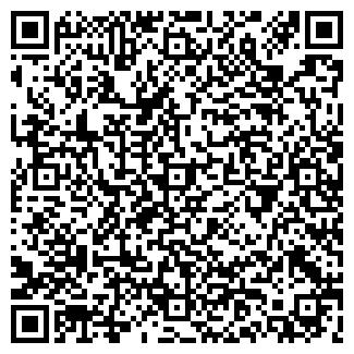 QR-код с контактной информацией организации Сумка, ЧП