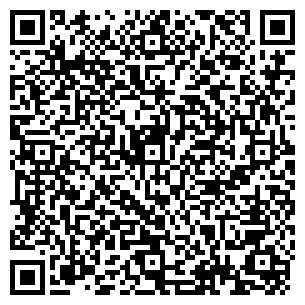 QR-код с контактной информацией организации Мавико, Компания
