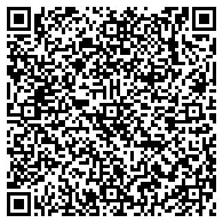QR-код с контактной информацией организации СЭНЭМИ, ПКФ