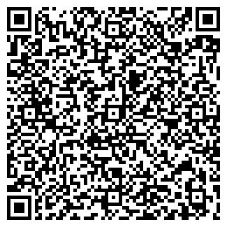 QR-код с контактной информацией организации Kross, ЧП