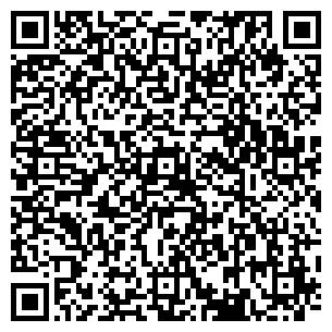 QR-код с контактной информацией организации Арте-Н, ЧП