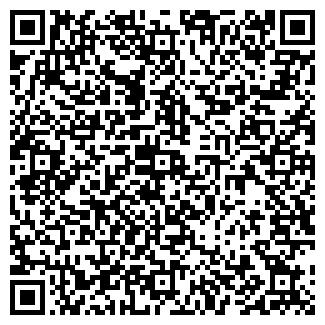 QR-код с контактной информацией организации Борисенко, СПД