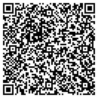 QR-код с контактной информацией организации Жирафка, ЧП - товары для детей