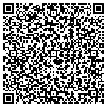 QR-код с контактной информацией организации Jungle Gym, ООО