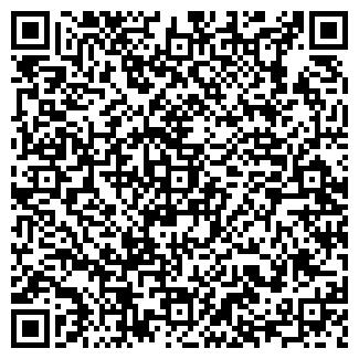 QR-код с контактной информацией организации Синевир, ЧП