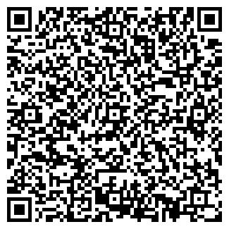 QR-код с контактной информацией организации Babymark, ЧП