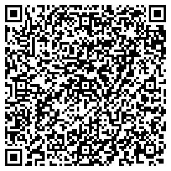 QR-код с контактной информацией организации Алиска, Интернет-магазин