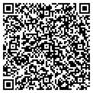 QR-код с контактной информацией организации Камин-сервис, ЧП