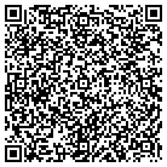 QR-код с контактной информацией организации Next (Некст), ИП