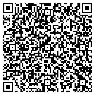 QR-код с контактной информацией организации ИП Vision