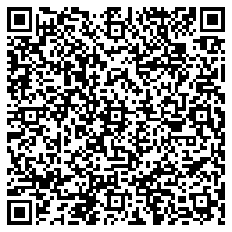"""QR-код с контактной информацией организации ИП """"ESIM"""""""