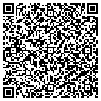 QR-код с контактной информацией организации Субъект предпринимательской деятельности PRO-LIGHT