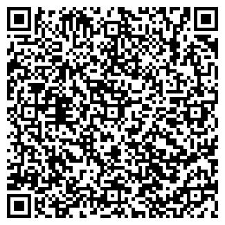 QR-код с контактной информацией организации Другая ТОО «Аргус»