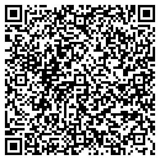 QR-код с контактной информацией организации ВАСИЛЬЕВ С.В., ИП