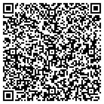 QR-код с контактной информацией организации Ник муравей, ЧП