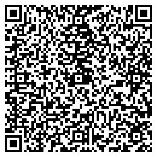 QR-код с контактной информацией организации ПЛУТОН, ЧП