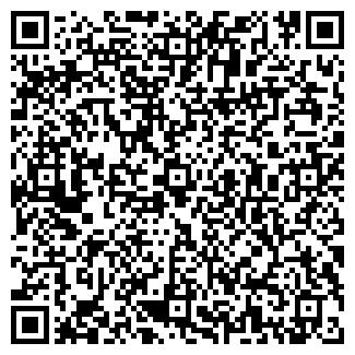 QR-код с контактной информацией организации Домега, ООО