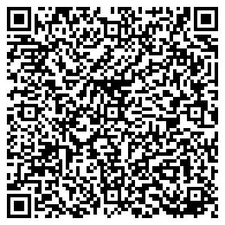 QR-код с контактной информацией организации Гинкул, ЧП