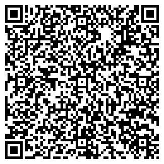 QR-код с контактной информацией организации Телмикс, ООО