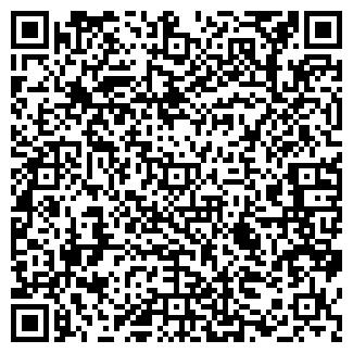 QR-код с контактной информацией организации Elektron, ЧП
