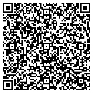QR-код с контактной информацией организации Cases, ЧП