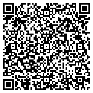 QR-код с контактной информацией организации Топмобила, ЧП