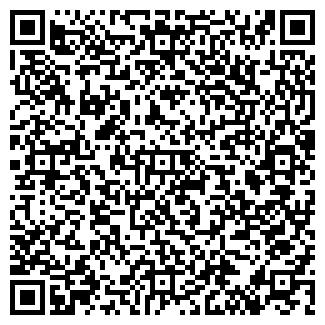 QR-код с контактной информацией организации Flashmobile, ЧП