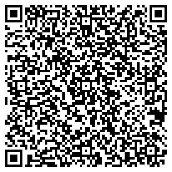 QR-код с контактной информацией организации Твоё Караоке, Компания