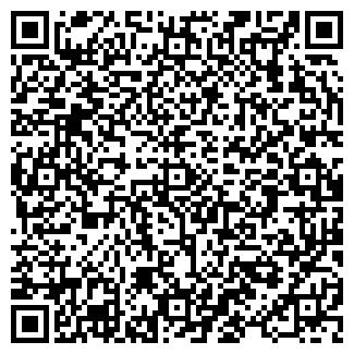 QR-код с контактной информацией организации Drummer, ЧП