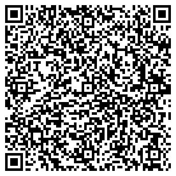 QR-код с контактной информацией организации Rline (Рлайн), ИП