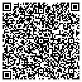 QR-код с контактной информацией организации VIP Club, ТОО