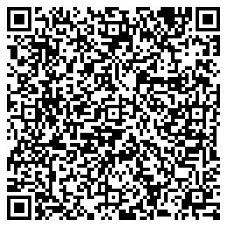 """QR-код с контактной информацией организации ИП """"Ника"""""""