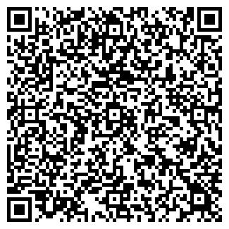 QR-код с контактной информацией организации Субъект предпринимательской деятельности ИгроТека
