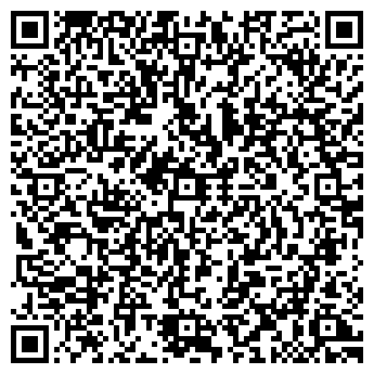 QR-код с контактной информацией организации Бинго, ЧП (Bingo)