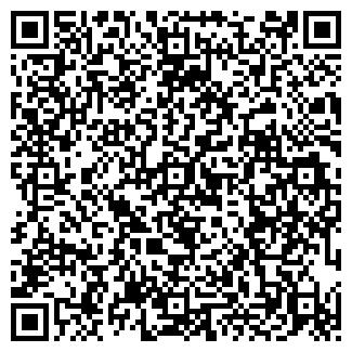 QR-код с контактной информацией организации № 200