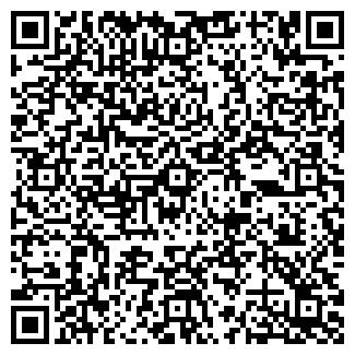 QR-код с контактной информацией организации № 199