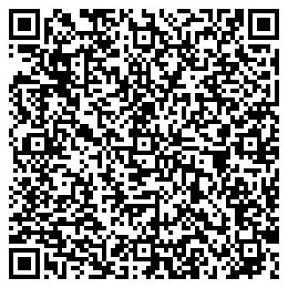 QR-код с контактной информацией организации Павлюк, ИП