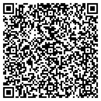"""QR-код с контактной информацией организации ИП """"Техномир"""""""