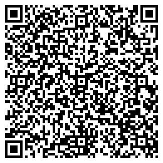"""QR-код с контактной информацией организации ИП """"Rimico"""""""