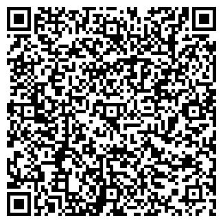 QR-код с контактной информацией организации Viva Company