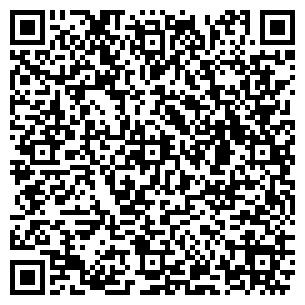 QR-код с контактной информацией организации DiALine, ЧП