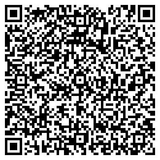 QR-код с контактной информацией организации Химмаг, ООО