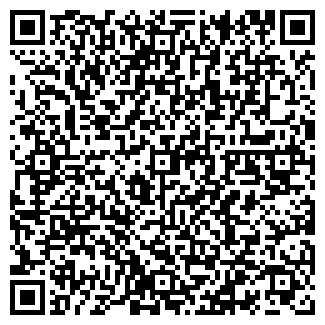 QR-код с контактной информацией организации ИСМАГУЛОВА ЧП
