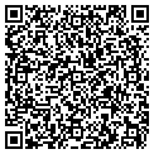 QR-код с контактной информацией организации Ascent (Асцент), ИП