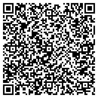 QR-код с контактной информацией организации Molymet