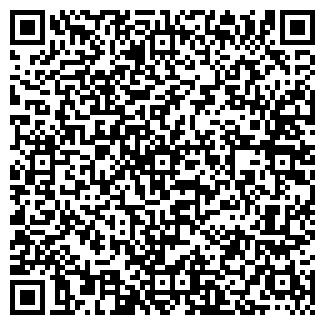QR-код с контактной информацией организации Субъект предпринимательской деятельности RoDim