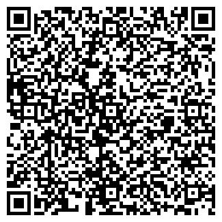 QR-код с контактной информацией организации DISLA, Частное предприятие
