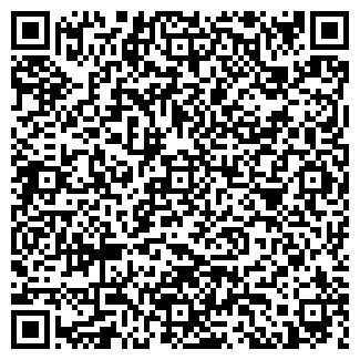 QR-код с контактной информацией организации Идея, ЧУП