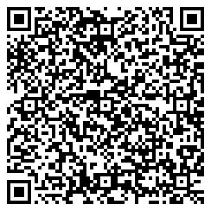 QR-код с контактной информацией организации Дикий В.В., ЧП