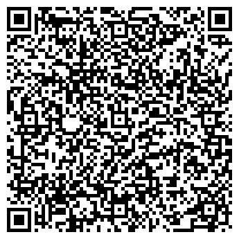 QR-код с контактной информацией организации Gipsy Kings, Компания
